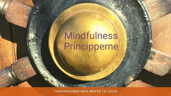 Mindfulness Principper